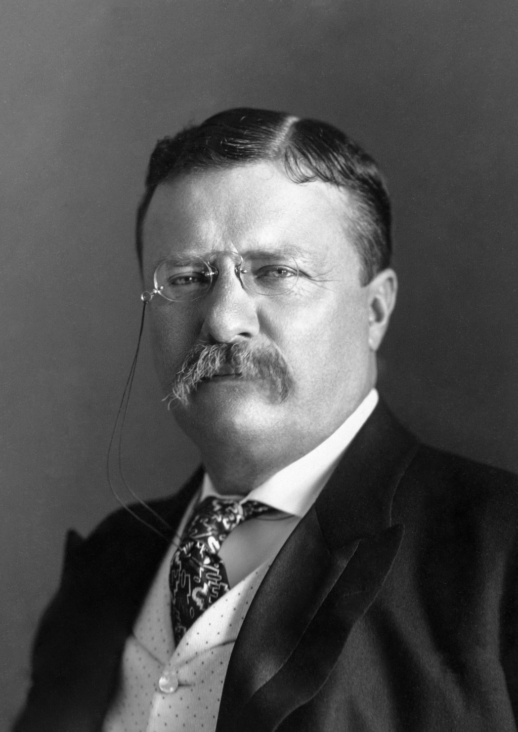 the long journey of theodore roosevelt to power in the united states A life-long public servant, theodore roosevelt the united states in april 1898, roosevelt resigned his roosevelt acknowledged the power of the.